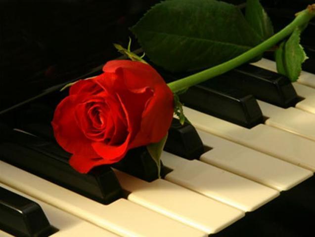 56. Gönülçelen -Inima furata - Heart Stealer - General Discussions - Comentarii - Pagina 20 Trandafir